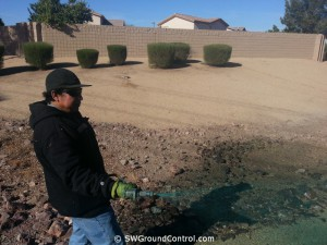 Mesa Weed Control Services